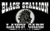 Black Stallion Lawn Care Service's logo