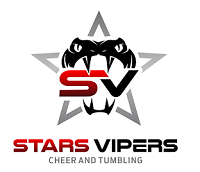 Stars Vipers's logo