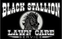 Black Stallion Lawn Care's logo
